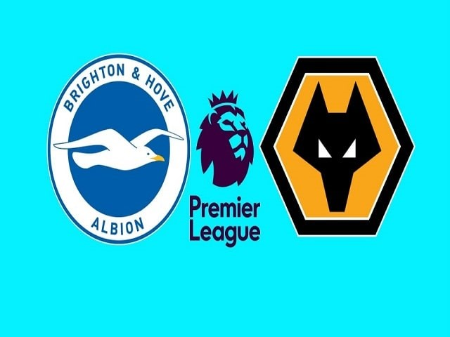 Soi kèo bóng đá trận Brighton vs Wolves, 00:30 – 03/01/2020